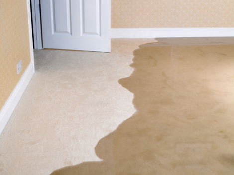 How to Protect Your Carpets and Rugs from Water Damages?